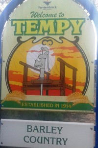 Tempy barley sign